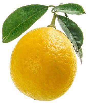 Лимон ароматный~ 500г 2-3 шт, Узбекистан