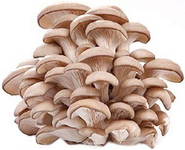 Вешенки свежие 280г грибы, Россия