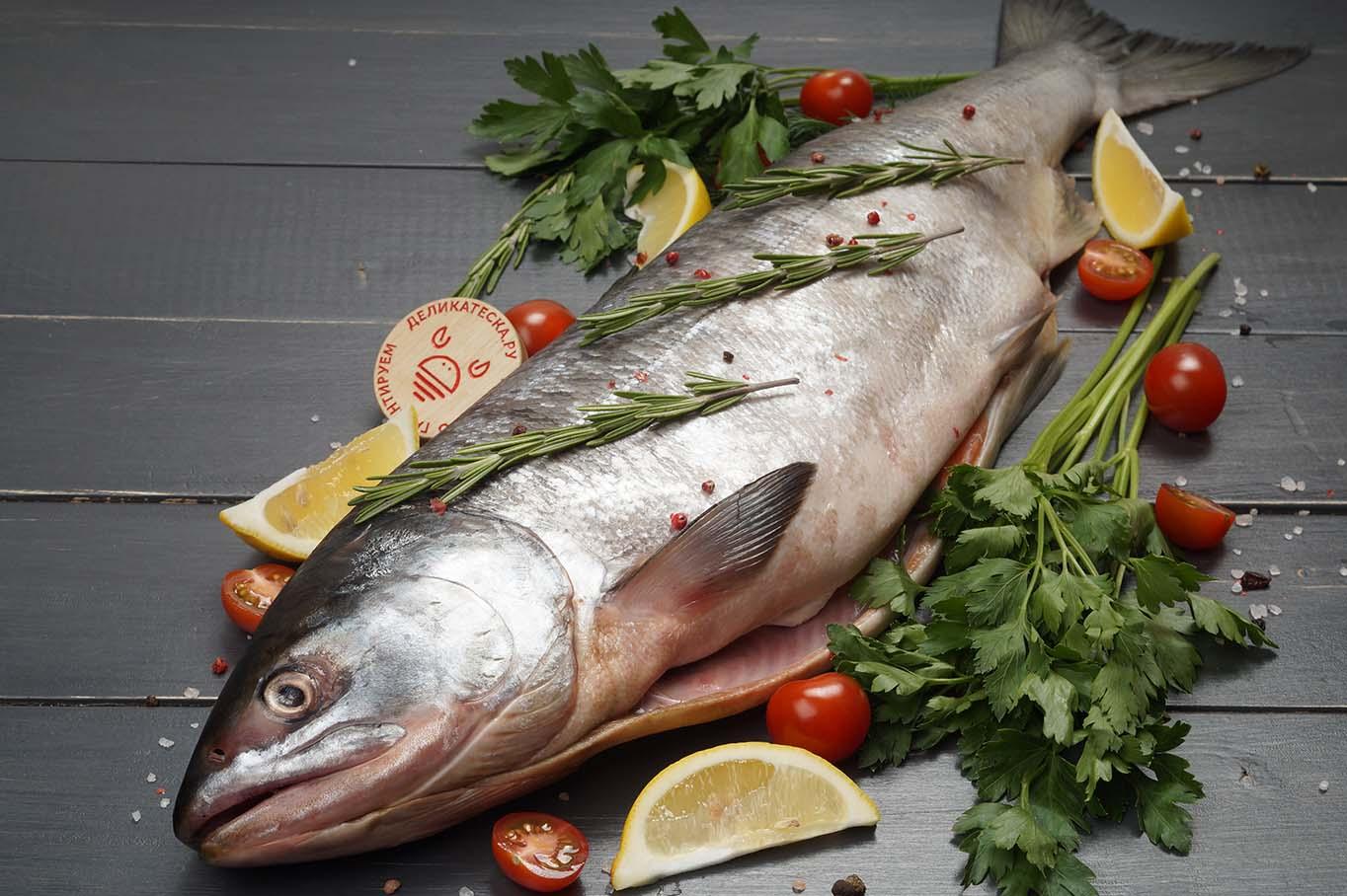 рыба лосось кета