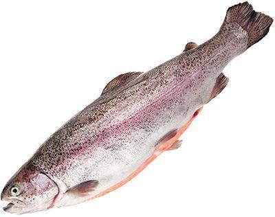 Форель озерная замороженная ~ 1,5кг 1-2шт, с головой, потрошеная, Карелия