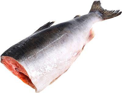 Лосось дикий кета Чумиканская ~ 1,5кг 1шт, свежий вылов, Охотское море, замороженная, крупная без головы