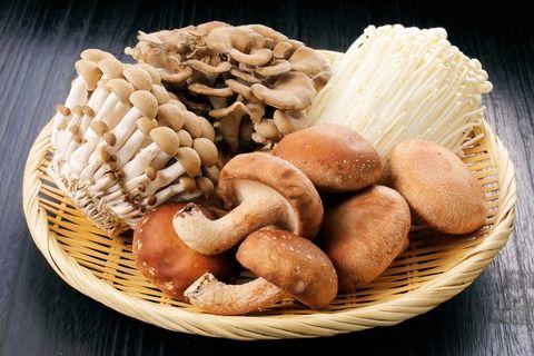 Грибы шиитаке: оригинальный вкус – Фактор Потери Веса доктора Жукова