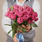 Роза кустовая Мисти Баблс 1шт