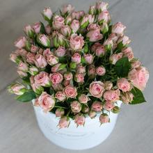 Розы кустовые Лидия в шляпной коробке L ~15шт