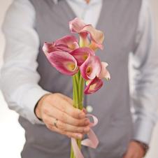 Калла розовая Гарнет Глоу 55см 1шт
