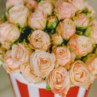 Розы кустовые Бомбастик в шляпной коробке L ~9шт