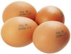 Яйца куриные СО Йод-Ум 10шт