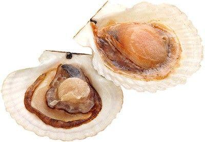 Морской гребешок на половинке раковины 1кг