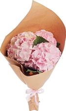 Букет №16 Гортензии розовые 3шт