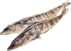 Ледяная рыба замороженная ~ 600г