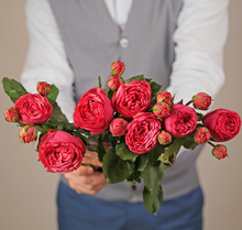Роза кустовая Пинк Пиано 1шт