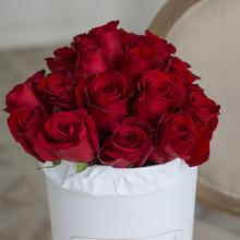 Розы Фридом в шляпной коробке XL ~27шт