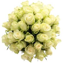 Розы белые Гратено Тембо в шляпной коробке XL ~25шт