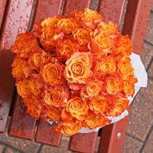 Розы Мари Клэр в шляпной коробке прованс XL ~29шт