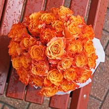 Розы Мари Клэр в шляпной коробке XL ~29шт