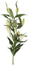 Лилия белая 1шт