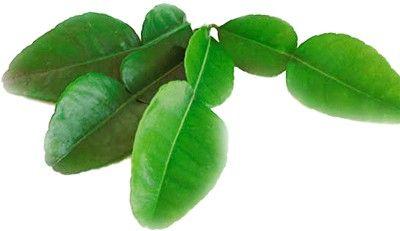 Листья лайма 50г
