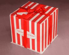 Танацетум Виктори в шляпной коробке прованс XL ~15шт