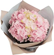 Букет №11 Гортензии розовые 5шт