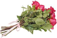 Лента атласная Розовая 16мм