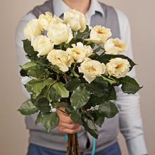 Роза Дэвида Остина Патиенс белая 50см 1шт