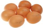 Яйца куриные СО коричневые 10шт