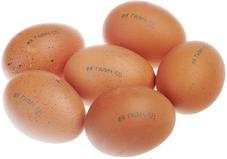 Яйца куриные столовые СО 10шт