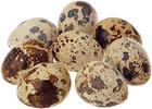 Яйца перепелиные 20шт