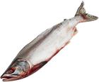 Дикий лосось горбуша Дальневосточная ~1,65кг