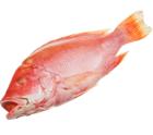 Снеппер красный свежемороженный ~4,5кг