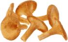 Печенье Лисички со вкусом холодца с хреном 130г