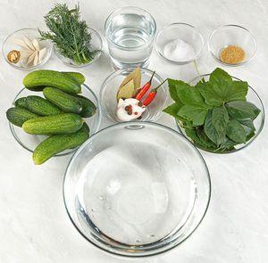 Подготовьте необходимые ингредиенты. Огурцы тщательно промойте, отсортируйте по размеру. Листья вишни, смородины, хрена промойте.