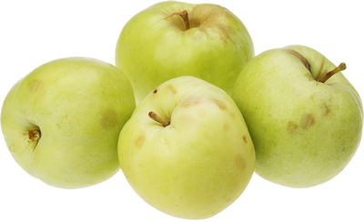 Яблоки Антоновка ~1кг