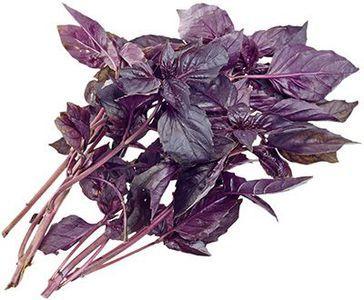 Базилик фиолетовый 50г