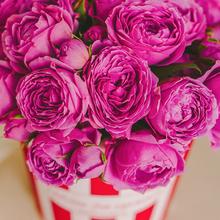 Розы Мисти Баблс в шляпной коробке L ~15шт