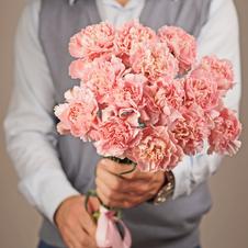 Гвоздика розовая 60см 1шт