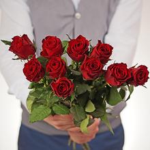 Роза красная Мадам Ред 50см 1шт