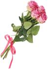 Лента атласная Красно-розовая 25мм