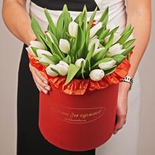 Тюльпаны белые в шляпной коробке ХL ~25шт