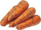Морковь молодая ~ 1кг