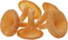 Печенье сдобное Лисички 130г