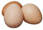 Яйца цесарки фермерские 10шт