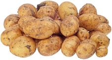 Картофель черри немытый 1кг