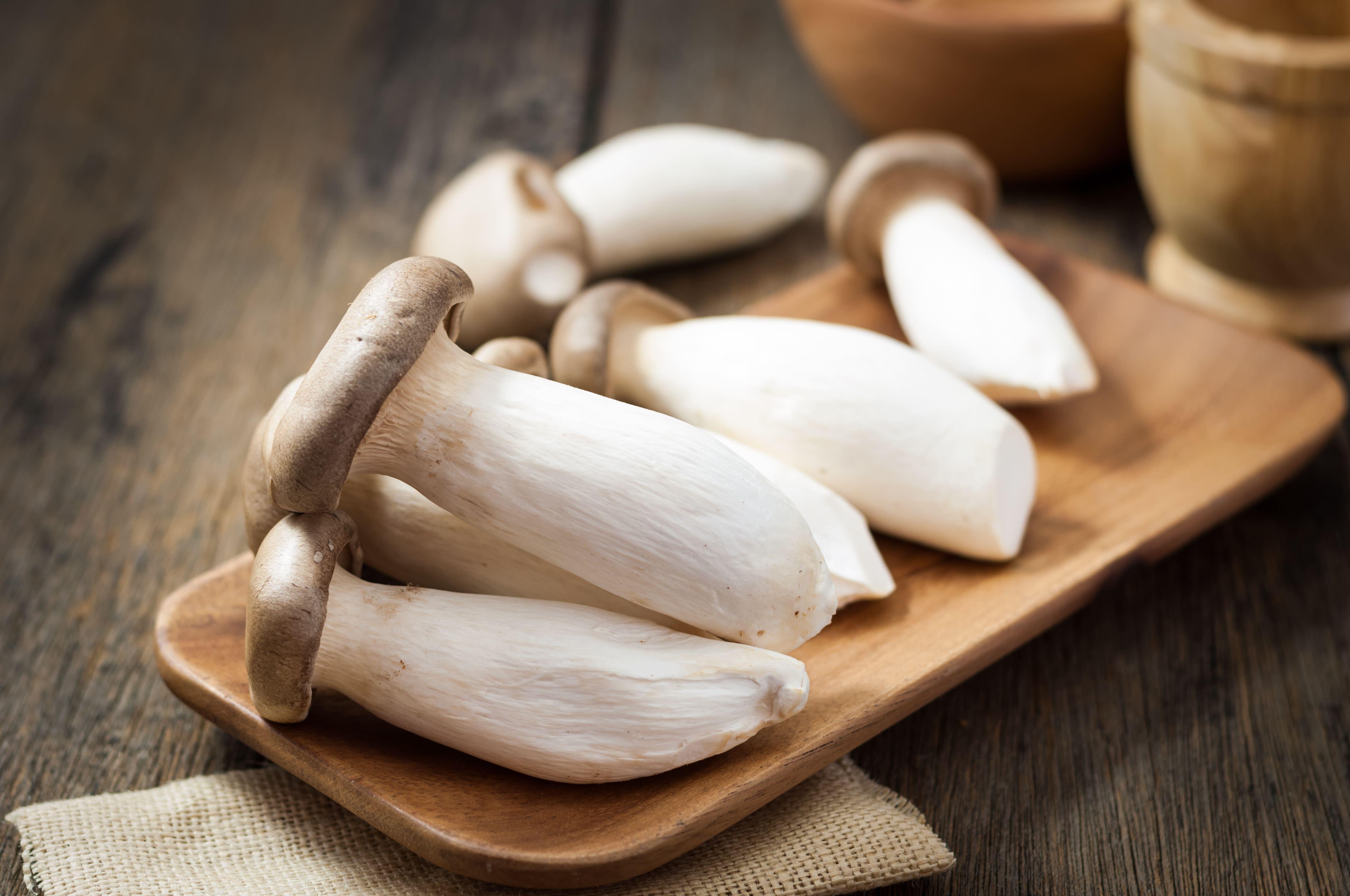 грибы эринги