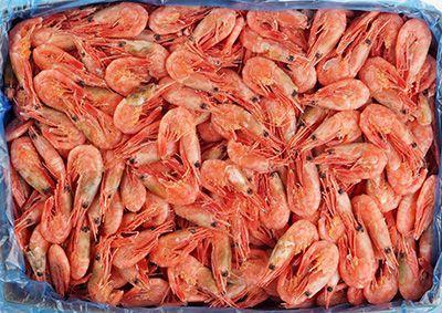 Креветки варено-мороженые пивные 5кг 80/100, без глазировки