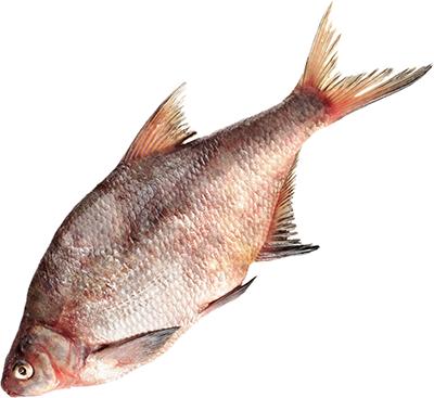 Лещ Балтийский морской ~ 1,5кг 1-2шт, замороженный с головой, вылов 2016г, глазурь 4%